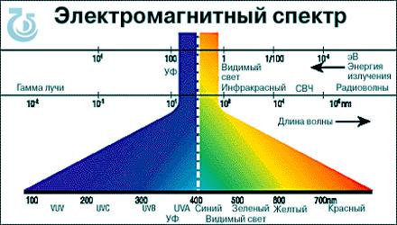 nevesta-uzbek-seks
